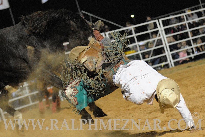 rodeo2011_10282