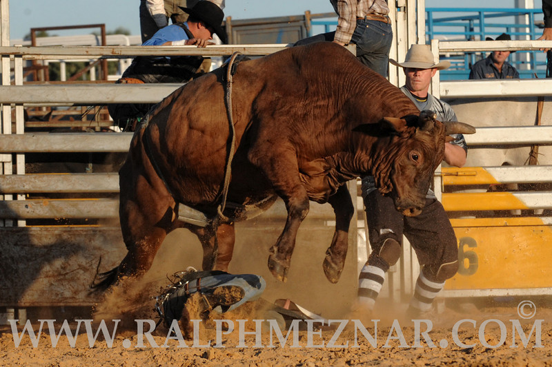 rodeo2011_9911