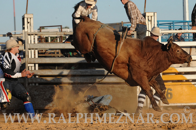 rodeo2011_9912