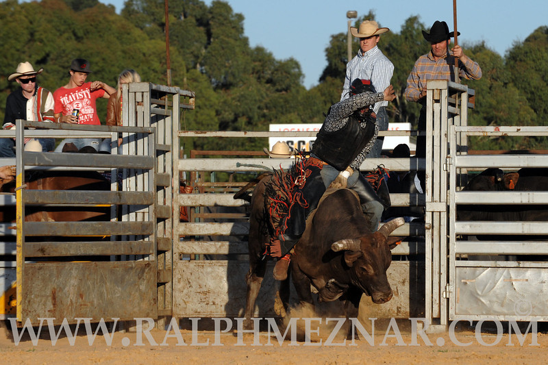 rodeo2011_9831