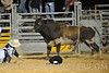 rodeo2011_10634