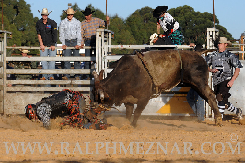 rodeo2011_9852