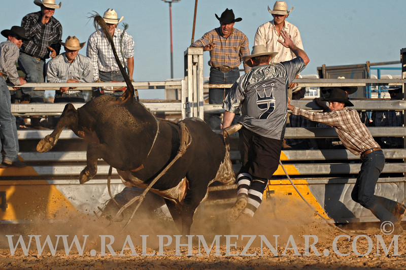 rodeo2011_9959