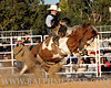 rodeo2011_9810