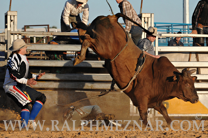 rodeo2011_9913