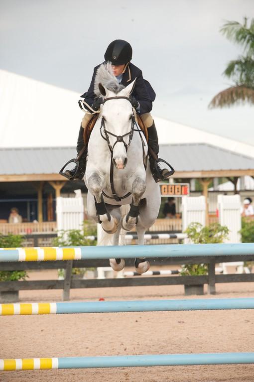 1037-$1,500 Charles Owen Low Amatuer Owner Jumper