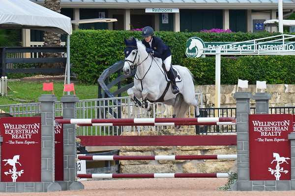 Class 100 - $34,000 Equiline Holiday&Horses Opener Grand Prix