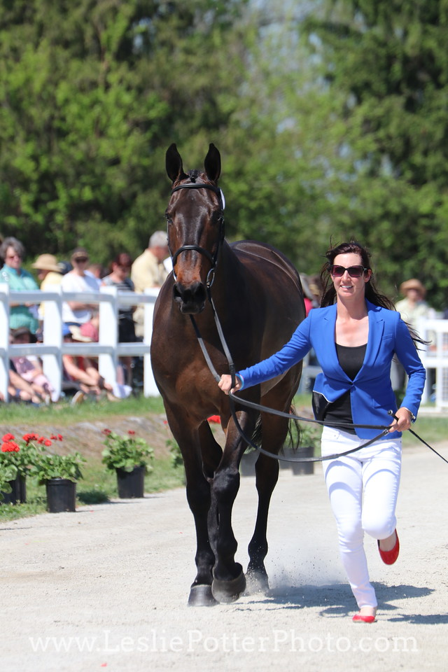 Jenny Caras and Fernhill Fortitude