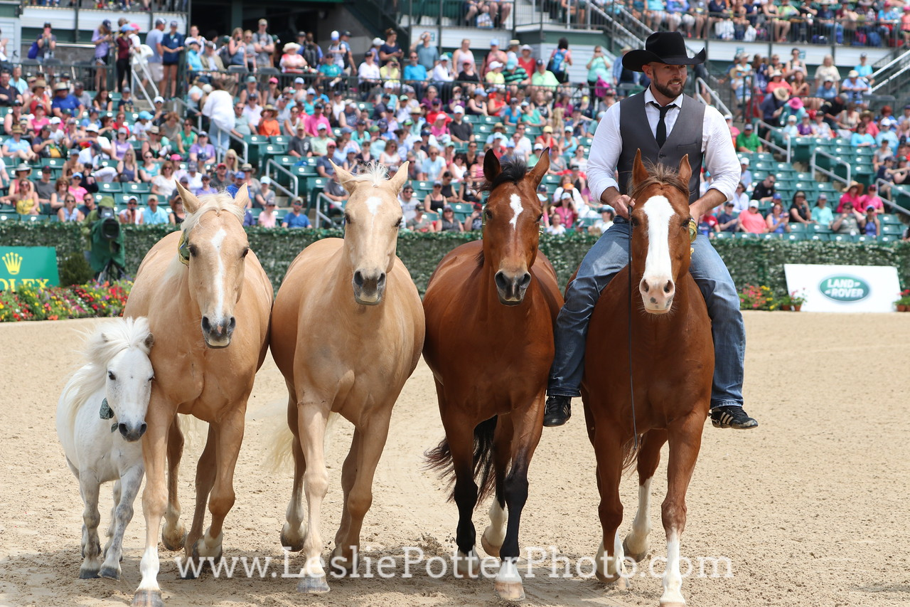Dan James at the Rolex Kentucky Three-Day Event