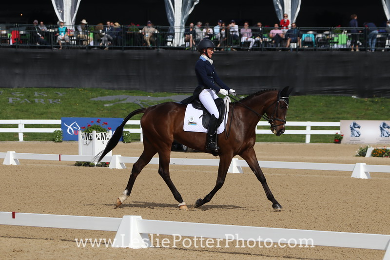 Dressage at the 2017 Rolex Kentucky Three-Day Event