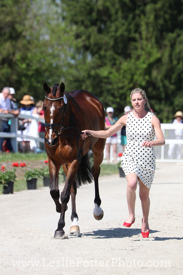 Holly Payne Caravella and Never Outfoxed