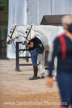 Sally Robertson with Lauren Kieffer Nicholson horses Paramount Importance and Landmark's Monte Carlo