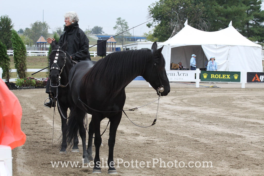 Carole Mercer at the 2010 Alltech FEI World Equestrian Games