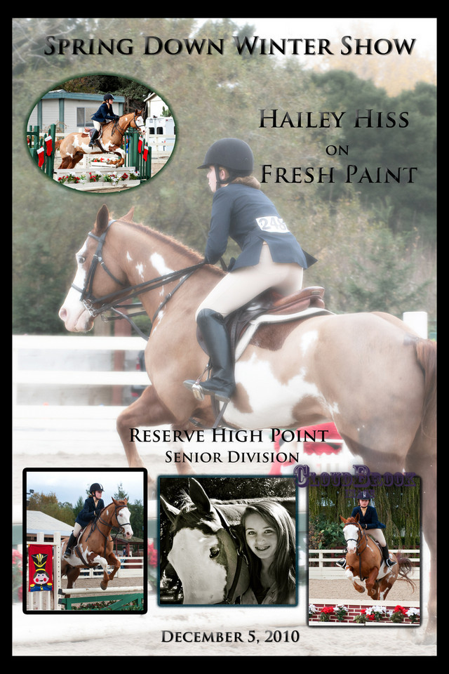 Example of custom equestrian posters offered. Starting at $75 including 3 photos.