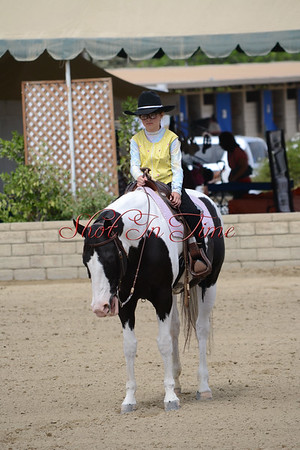 Friday Equitation and Pleasure Classes