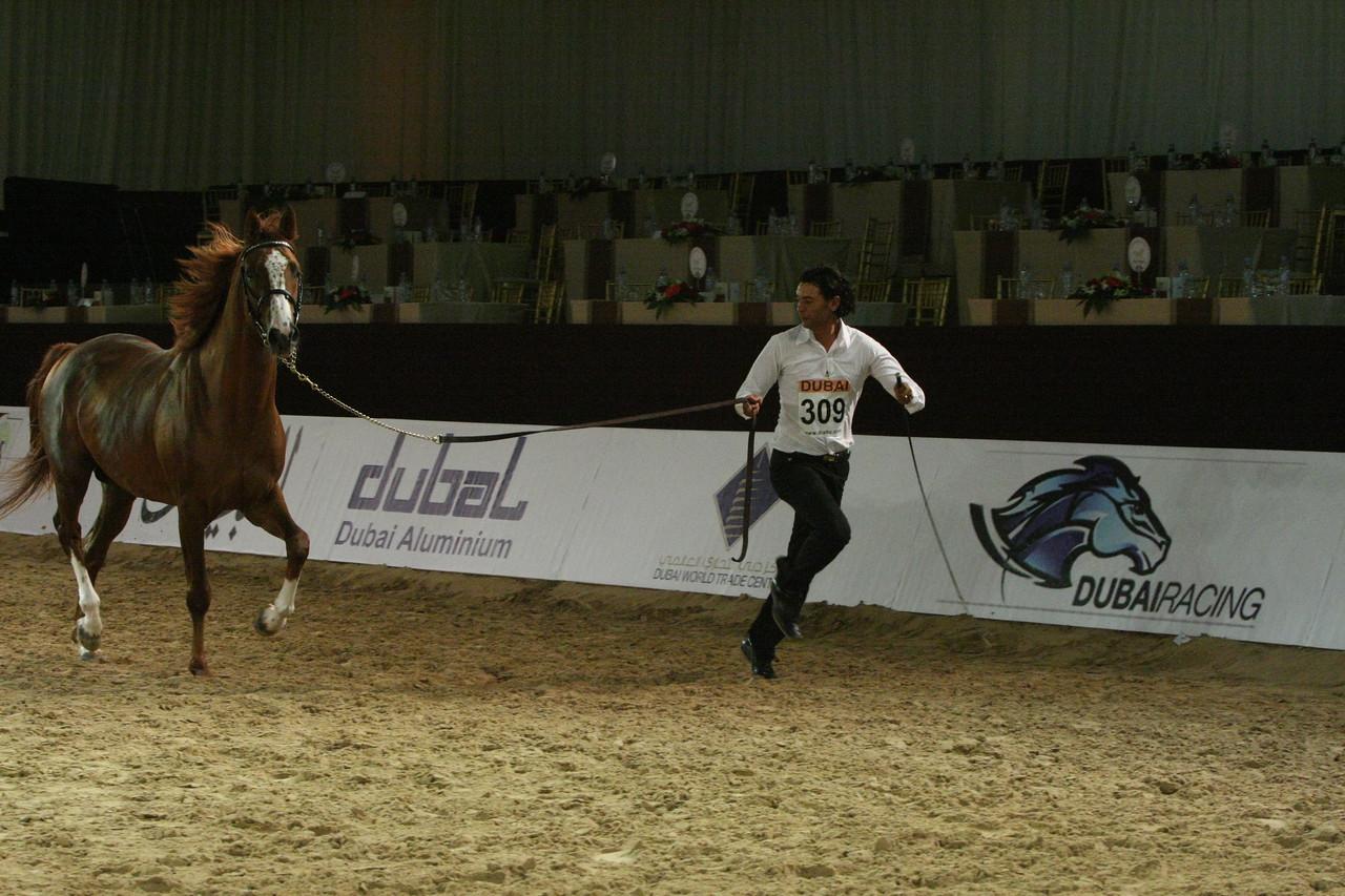 45. Al Arab