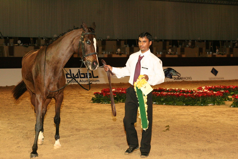 10.<br /> Bay Brulee, 4th Racing mares