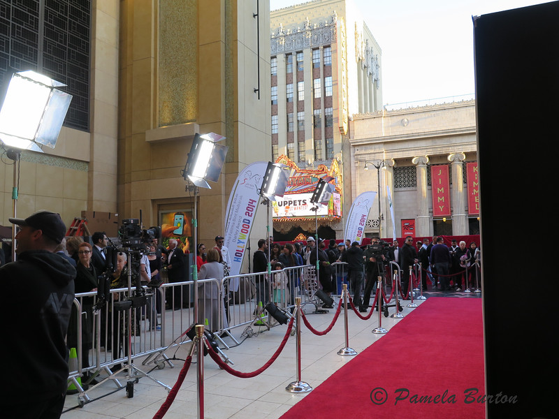 the red carpet awaits