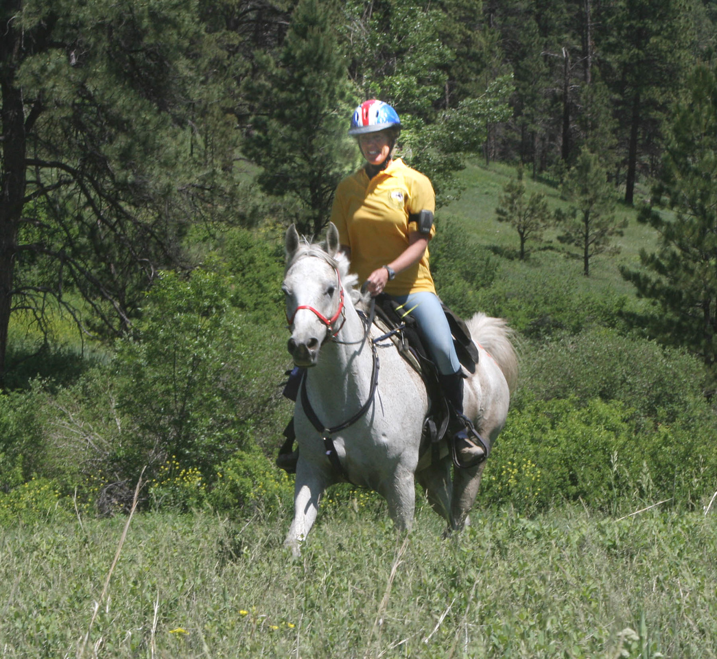 Sue Summers won the Ft. Howes ride on Mags Motivator