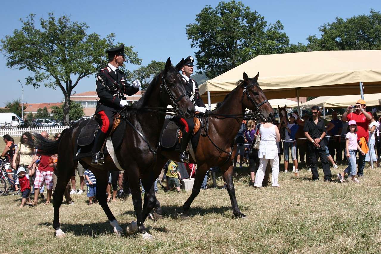 2.  0045 The Mounted Police lead the band to the<br /> Prize Giving