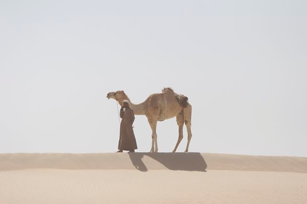 1.  Camel on the hill...handler on cell phone