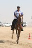 HM King of Malaysia riding Ibrahim Pascha Larzac