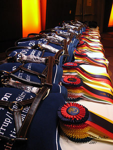 Awards and Ribbons waiting to be distributed.