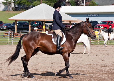 Horse Show_072410_0017