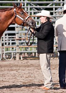 Horse Show_072410_0006