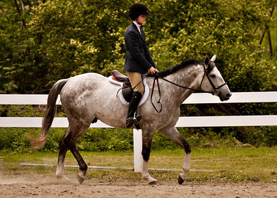 Valley Equestrian 052211 -867 copy