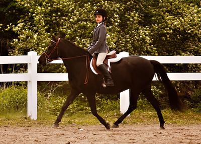 Valley Equestrian 052211 -845 copy