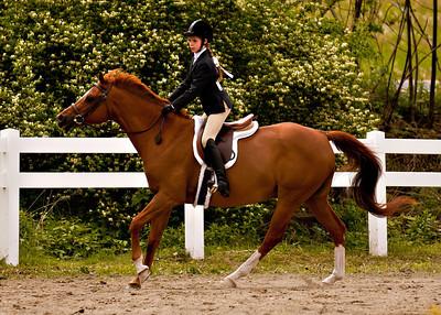 Valley Equestrian 052211 -862 copy