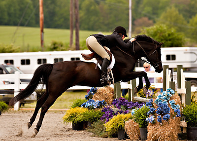 Valley Equestrian 052211 -719 copy
