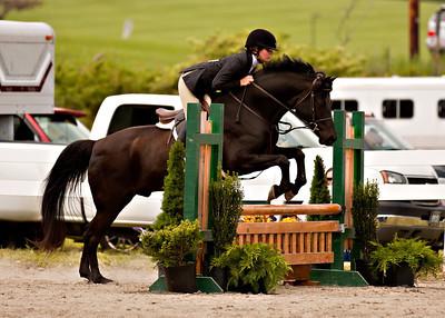 Valley Equestrian 052211 -722 copy