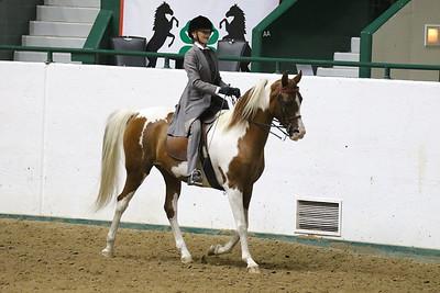 Saddle Seat Pleasure-3715