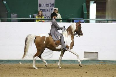 Saddle Seat Pleasure-3713