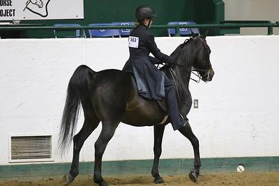Saddle Seat Pleasure-3711