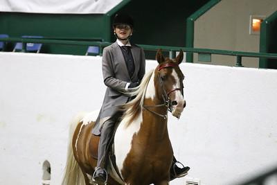 Saddle Seat Pleasure-3716