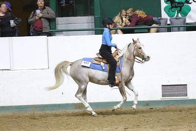 Pony Pleasure-3701