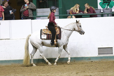 Pony Pleasure-3697