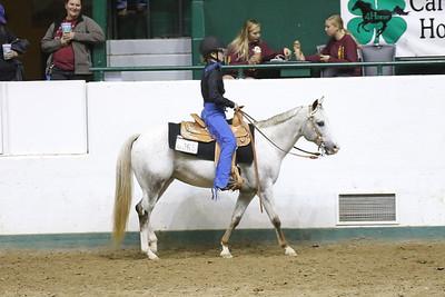 Pony Pleasure-3693