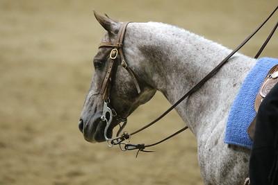 Pony Pleasure-3709