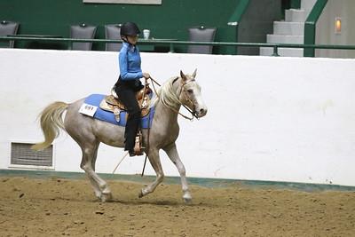 Pony Pleasure-3703
