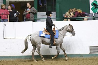 Pony Pleasure-3700