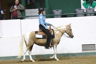 Pony Pleasure-3690
