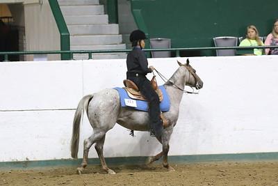 Pony Pleasure-3684