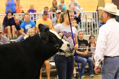 Show Photos-4817_Foundation Simmental