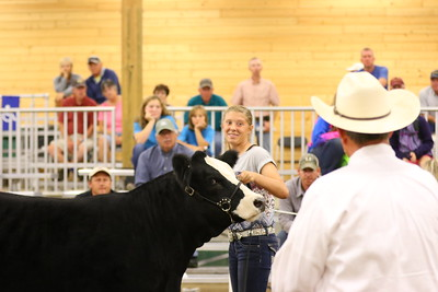 Show Photos-4805_Foundation Simmental