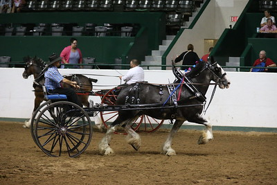 DP1X5278_Single cart Mens Clydesdale