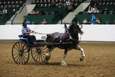 DP1X5310_Single cart Mens Clydesdale